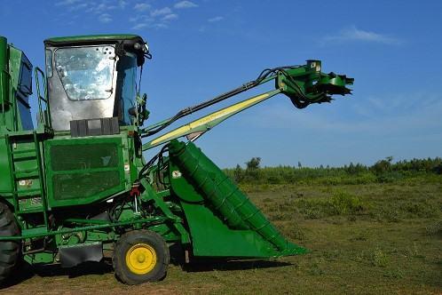 máy thu hoạch mía CH570