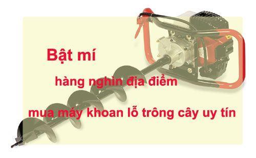 mua máy khoan lỗ trồng cây ở Hà Nội