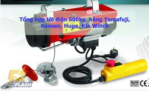 Tời điện 500 kg
