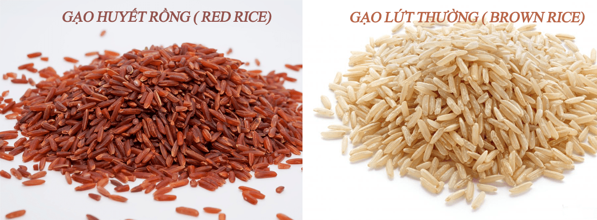 phân biệt gạo lứt